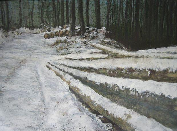 Weg im verschneiten Wald, 2007