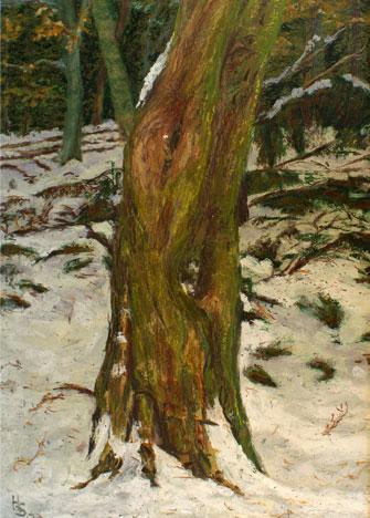 Kastanie im Winterwald , 2007