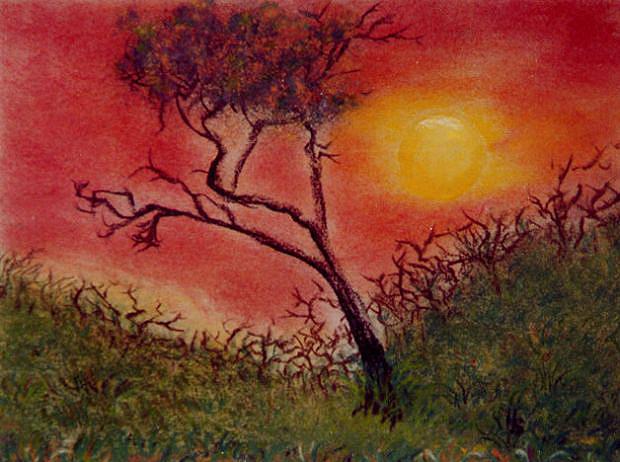 Afrikanischer Abend, 2003